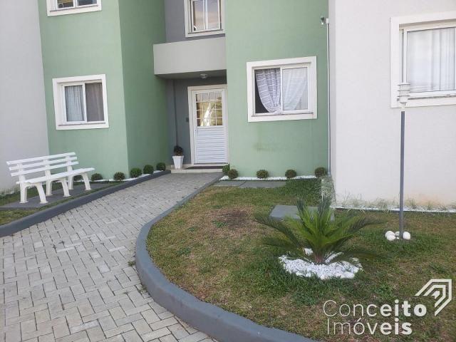 Apartamento à venda com 3 dormitórios em Oficinas, Ponta grossa cod:392974.001 - Foto 2