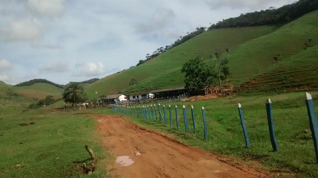 Fazenda 97 alqueires cariacica - Foto 9