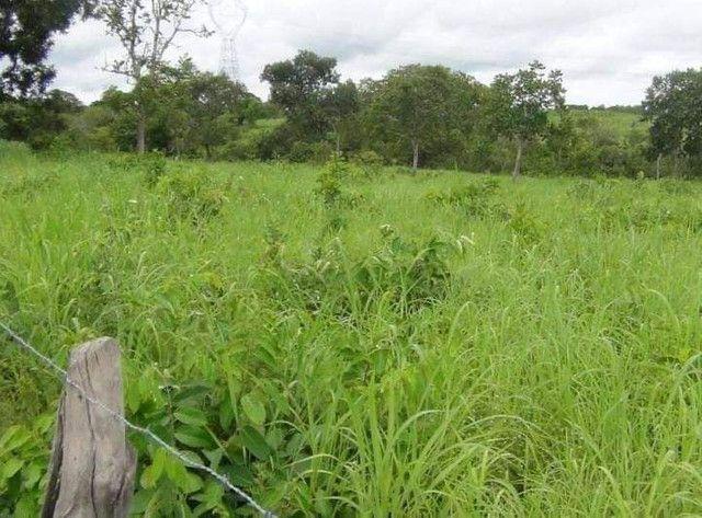 Compra de terra; sítios, chácara e fazenda. - Foto 7
