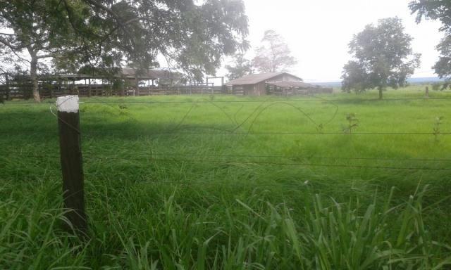 8271   fazenda à venda em pontal do araguaia - Foto 3