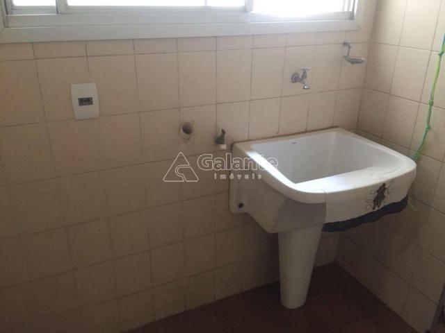 Apartamento à venda com 3 dormitórios em Cambuí, Campinas cod:AP001930 - Foto 12