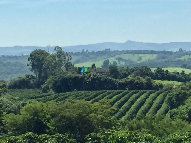 Fazenda à venda - 80 hectares - lavras (mg) - Foto 12