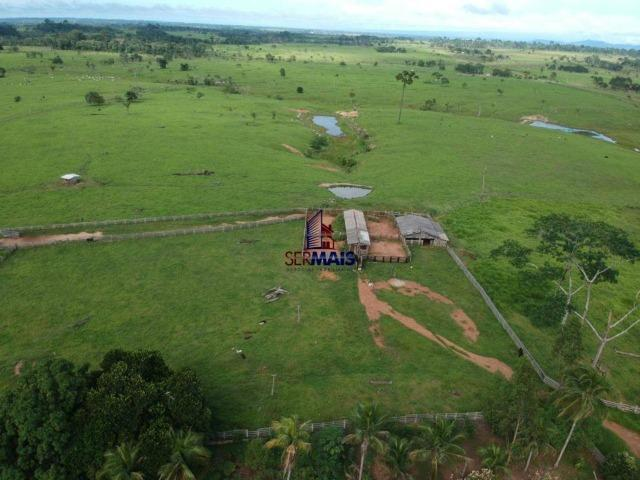 Fazenda à venda, por R$ 4.340.000 - Centro - Seringueiras/RO - Foto 5