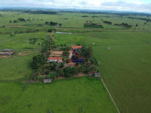 Fazenda à venda, por R$ 4.340.000 - Centro - Seringueiras/RO - Foto 3