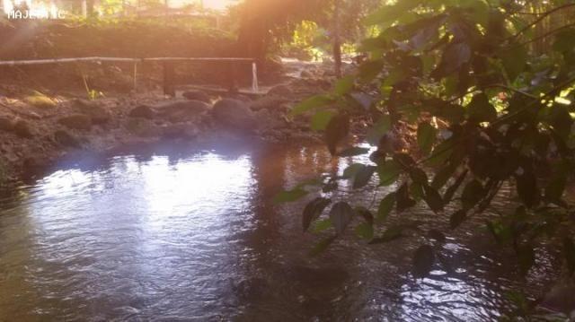 Sítio para venda em cachoeiras de macacu, faraó, 3 dormitórios, 1 banheiro, 10 vagas - Foto 16
