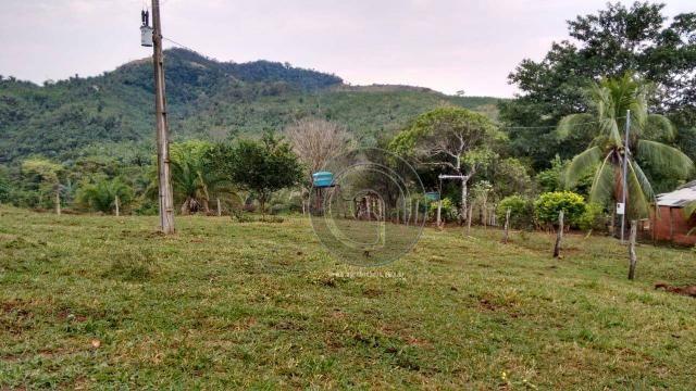 Fazenda com 313 ha região da serra de são vicente - Foto 2