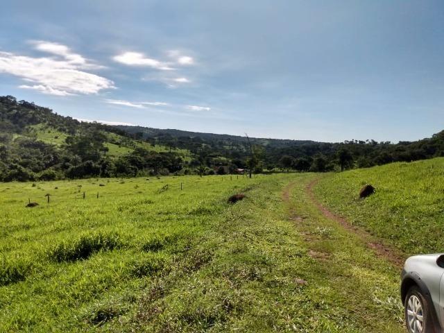 Fazenda no município de Bonfinópolis 24 alqueires - Foto 6