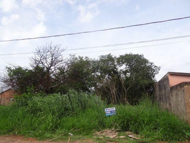 Terreno ao lado do bairro Rita Vieira, medindo 12x25m = 300m²