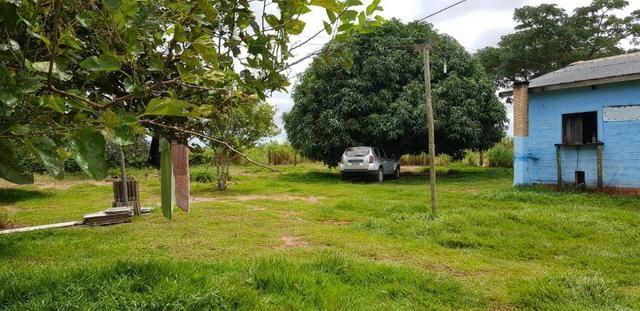 Linda Fazenda em Mato Grosso - em Conquista D´oeste - MT - Foto 16