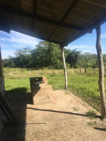 Sítio na Comunidade Carrijo à 60 Km do Trevo do Lagarto - Foto 11