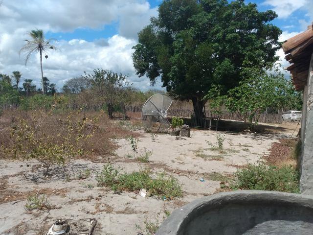 Terreno de 58 hactares com casa - Foto 5