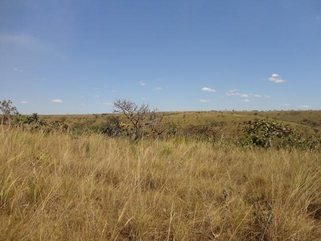 Área de Fazenda com 48 Hectares Localizado no Santo Antônio do Descoberto - Go