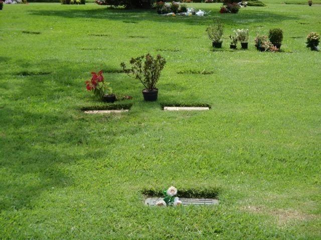 Jazigo - Cemitério Morumby - Foto 3
