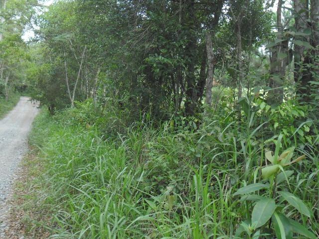 Terreno Excelente, Plano, Barato, Embura, 2.500m, R$ 40 Mil - Foto 5