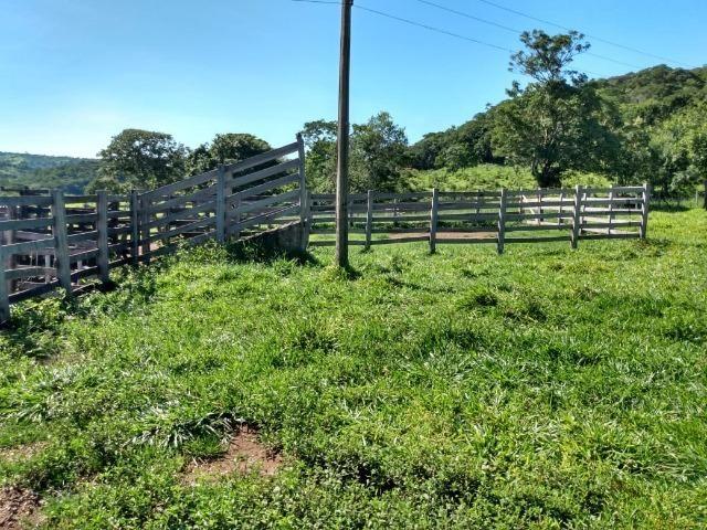 Fazenda no município de Bonfinópolis 24 alqueires - Foto 11