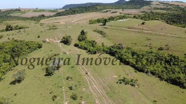 Fazenda com 400 alqueires na região (Nogueira Imóveis Rurais) - Foto 17
