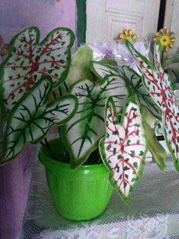 arranjos de flores  - Foto 2