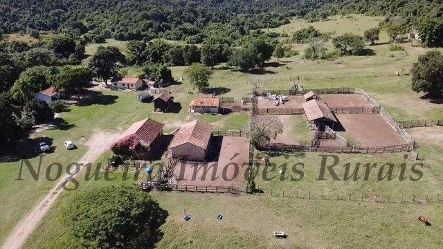 Fazenda com 400 alqueires na região (Nogueira Imóveis Rurais) - Foto 2