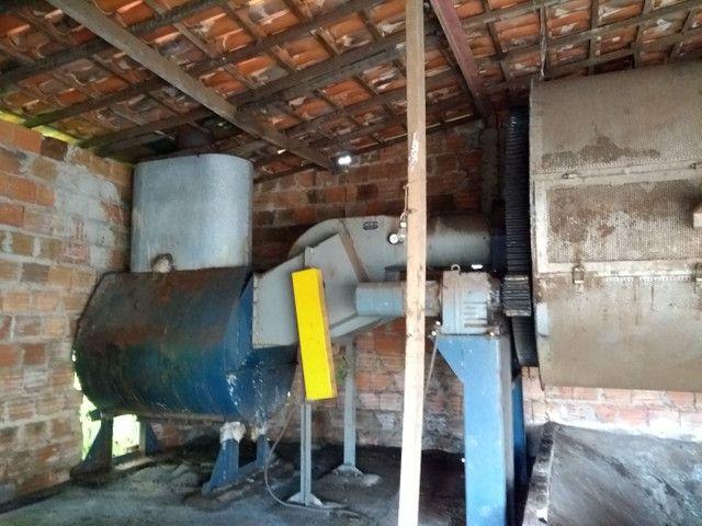 Máquina e secador de café - Foto 2