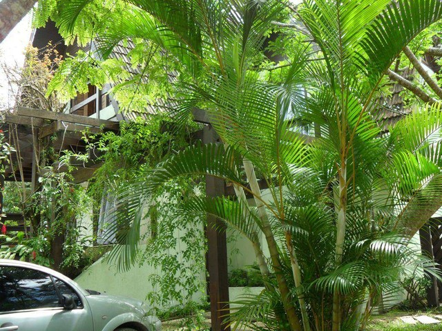 Bertioga - Casa Padrão - Riviera - Módulo 20 - Foto 15