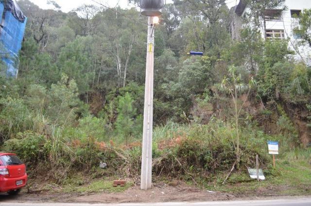 Terreno à venda, 2723 m² por r$ 5.800.000,00 - floresta - gramado/rs