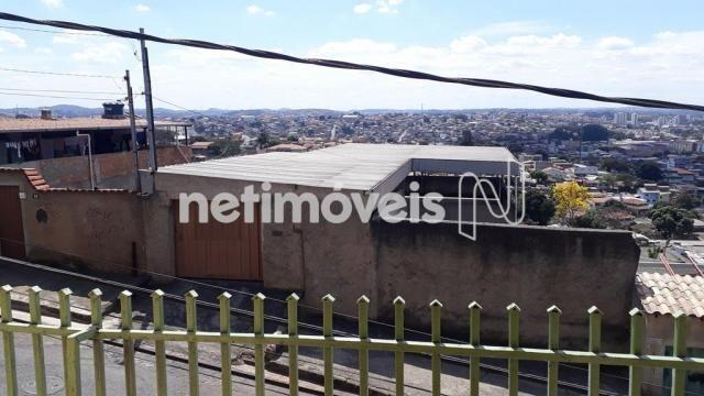 Casa à venda com 5 dormitórios em Novo glória, Belo horizonte cod:766818 - Foto 5