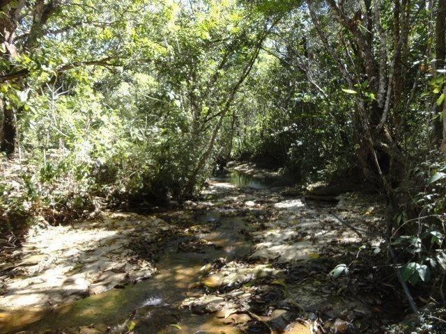 Área de Fazenda com 48 Hectares Localizado no Santo Antônio do Descoberto - Go - Foto 5