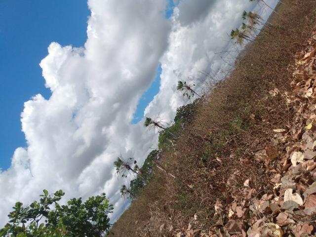 Terreno de 58 hactares com casa - Foto 7