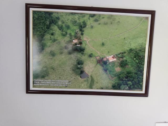 Fazenda no município de Bonfinópolis 24 alqueires - Foto 15
