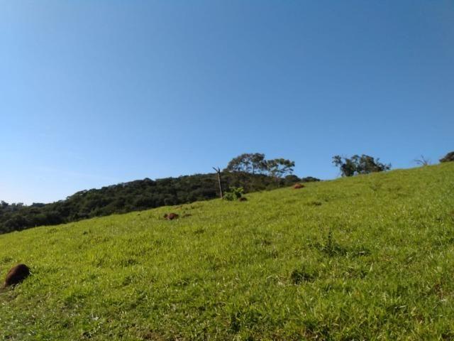 Fazenda no município de Bonfinópolis 24 alqueires - Foto 2