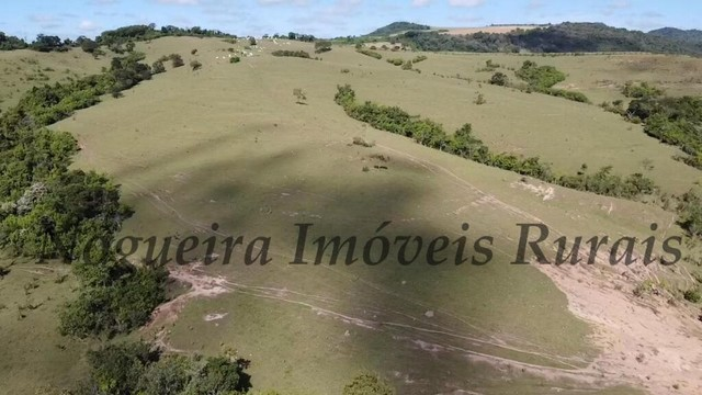 Fazenda com 400 alqueires na região (Nogueira Imóveis Rurais) - Foto 9