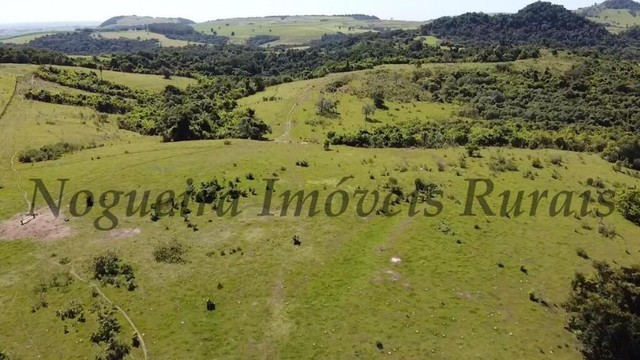 Fazenda com 400 alqueires na região (Nogueira Imóveis Rurais) - Foto 15
