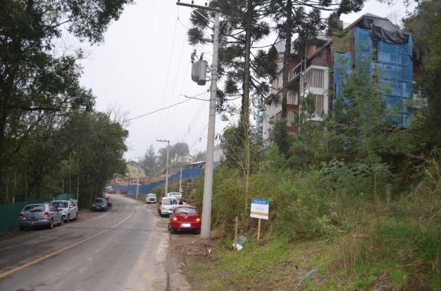 Terreno à venda, 2723 m² por r$ 5.800.000,00 - floresta - gramado/rs - Foto 7