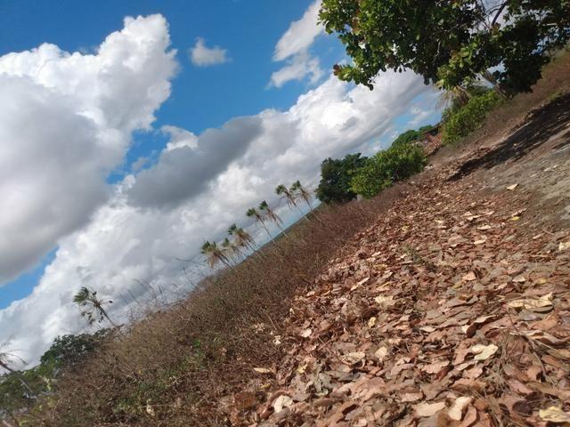 Terreno de 58 hactares com casa - Foto 13