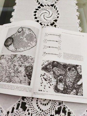 Livro Biologia Celular e Molecular - Junqueira e Carneiro - Foto 3