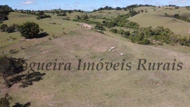 Fazenda com 400 alqueires na região (Nogueira Imóveis Rurais) - Foto 12