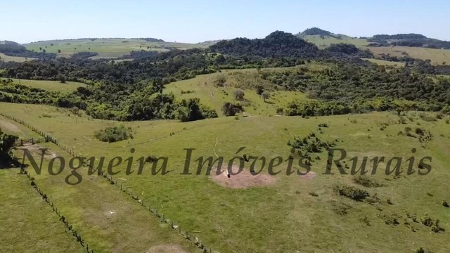 Fazenda com 400 alqueires na região (Nogueira Imóveis Rurais) - Foto 10