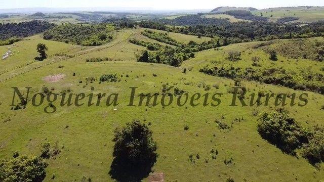 Fazenda com 400 alqueires na região (Nogueira Imóveis Rurais) - Foto 5