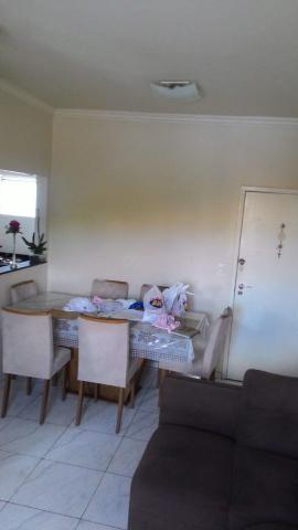 Apartamento de 3q todo reformado, no palmeiras - Foto 3