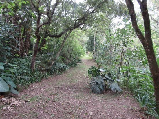 Galpão à venda, 1800 m² por R$ 1.900.000,00 - Jardim Santana - Mairiporã/SP - Foto 3