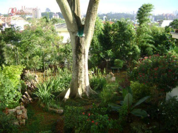 Terreno Residencial à venda, Três Figueiras, Porto Alegre - TE0094. - Foto 6