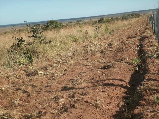 Linda Fazenda em Mato Grosso - em Conquista D´oeste - MT - Foto 15