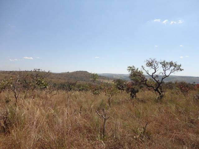 Área de Fazenda com 48 Hectares Localizado no Santo Antônio do Descoberto - Go - Foto 3