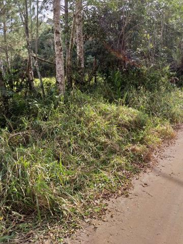 Terreno Excelente, Plano, Barato, Embura, 2.500m, R$ 40 Mil - Foto 4