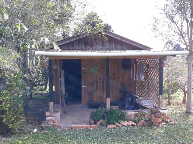 Chácara em Contenda - Urbana - Foto 2