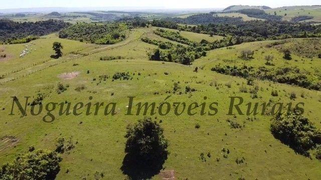 Fazenda com 400 alqueires na região (Nogueira Imóveis Rurais) - Foto 11
