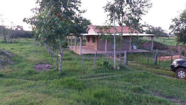 Ótima chácara Gameleira 7 hectares