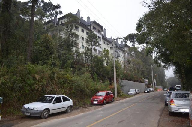 Terreno à venda, 2723 m² por r$ 5.800.000,00 - floresta - gramado/rs - Foto 3