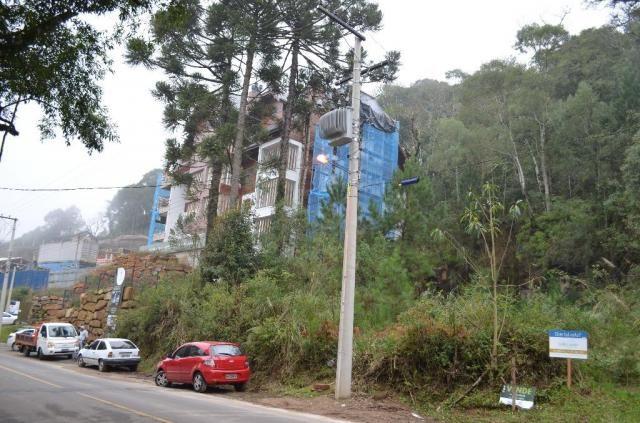 Terreno à venda, 2723 m² por r$ 5.800.000,00 - floresta - gramado/rs - Foto 9