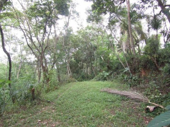 Galpão à venda, 1800 m² por R$ 1.900.000,00 - Jardim Santana - Mairiporã/SP - Foto 2